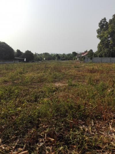 ที่ดิน 3500000 กาญจนบุรี เมืองกาญจนบุรี ท่ามะขาม